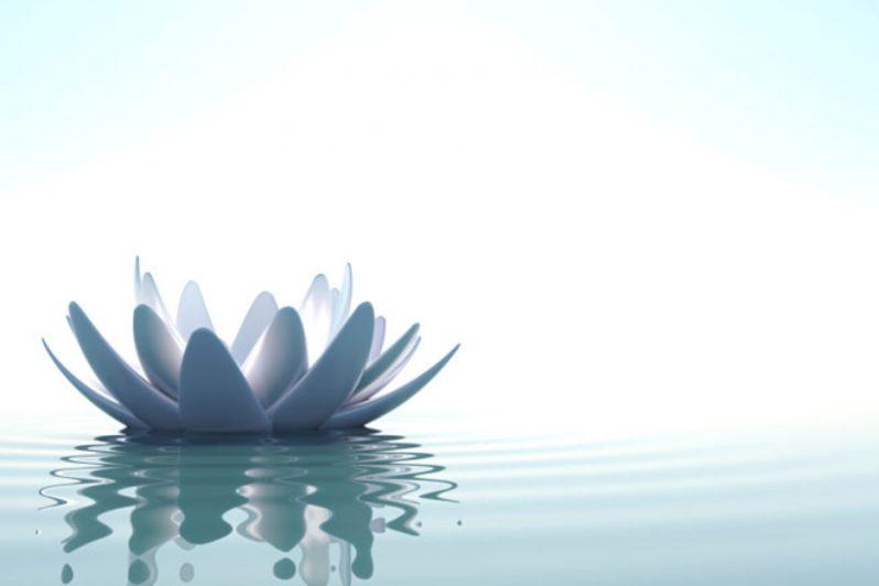 Stillness conscious leadership